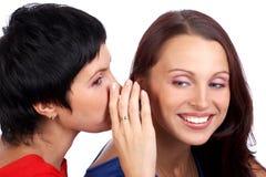 Women friends Stock Image