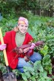 Women in garden. Happy women in garden with vegetables Royalty Free Stock Image