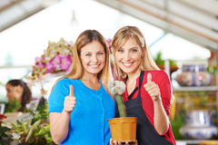 Women in garden center holding thumbs up Royalty Free Stock Image