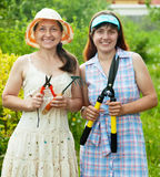Women with garden tools at yard. Two women with garden tools at yard Royalty Free Stock Photography
