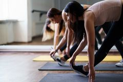 Women group workout. Stretching during yoga class stock image