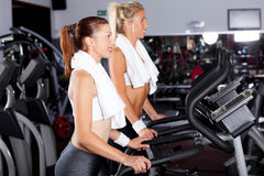Women in gym Royalty Free Stock Photography