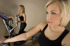 Women At The Gym Royalty Free Stock Images