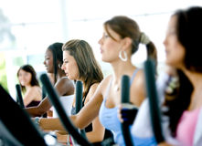 Women at the gym Stock Photos