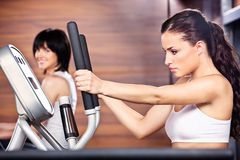 Women in gym center. Women doing exercise in gym center Royalty Free Stock Photography