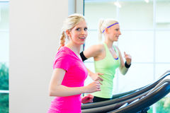 Women in gym doing sport on treadmill Royalty Free Stock Photo