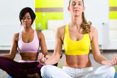 Women in the gym doing yoga exercise for fitness. Young women doing yoga and meditation in gym for better fitness, caucasian and latina people Royalty Free Stock Photography