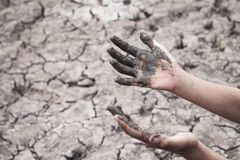 The women hand on the arid soil. The women hand on the arid soil in hot weather lacked drinking water Royalty Free Stock Photography