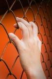 Women hand catching iron bar on orange background, imprison feel. Ing royalty free stock images