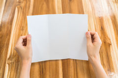 Women hand hold Trifold white template paper on wood texture . stock images