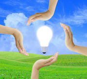 Women hand with Light bulb Royalty Free Stock Photography
