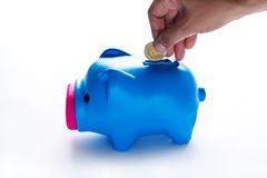 Women hand putting coin into a piggy bank over gray background Stock Photos