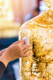 Women hand putting gold leaf onto The Buddha statue to gild. Which people use to worship the Buddha image royalty free stock photo