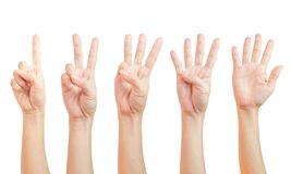 Free Women Hand Signs Are Counting. Using Fingers Symbol. Set Of Number One Two Three Four Five  1 2 3 4 5  Isolated On White Royalty Free Stock Photos - 190759048