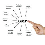 Women hand writing components of GMP(Good Manufacturing Practice Stock Images