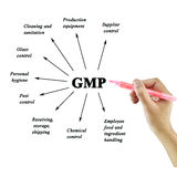 Women hand writing element of GMP on white background  for used Stock Image