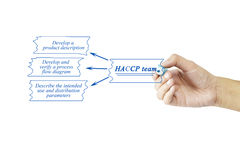 Women hand writing element of HACCP team for business concept an Royalty Free Stock Photography