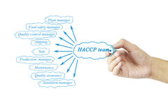 Women hand writing element of HACCP team for business concept an Stock Image