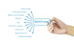 Women hand writing element of HACCP team for business concept an Royalty Free Stock Image