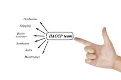 Women hand writing element of HACCP team for business concept an Royalty Free Stock Images