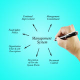 Women hand writing element Management System for use in manufacturing and business concept. (Training and Presentation Royalty Free Stock Photo
