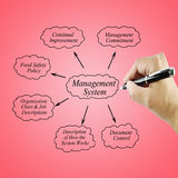 Women hand writing element Management System for use in manufacturing and business concept Stock Photography