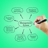 Women hand writing element Management System for use in manufacturing and business concept Royalty Free Stock Photos