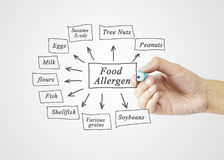 Women Hand Writing Element Of Major Food Allergens (Peanuts, Tree Nuts, Sesame Seeds, Eggs, Soybeans, Milk, Various Grains, Flour Royalty Free Stock Photos