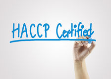 Women hand writing HACCP certified (Hazard Analysis of Critical. Control Points) concept on gray background for business strategy and used in manufacturing stock image