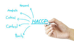 Women hand writing meaning of HACCP concept (Hazard Analysis of Critical Control Points) on green background Royalty Free Stock Image