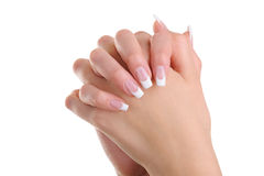 Women hands with beauty french manicure. Over white background royalty free stock image