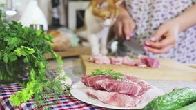 Women hands cutting fresh pork on a wooden cutting board and red-white cat feeds stock footage