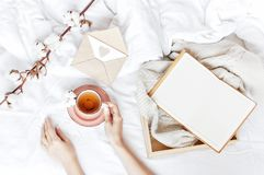 Women hands hold cup of hot tea with delicate cotton flower open notebook love letter tray white knitted sweater in the bed. Cozy. Morning breakfast at home stock photography