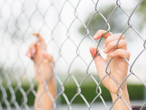 Women Hands holding fence on outdoor scenery during daylight. Hand In Jail, concept of life imprisonment Royalty Free Stock Images
