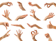 Women hands showing different gestures Stock Photo