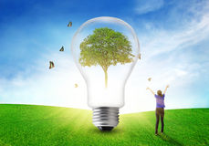 Women happy refreshing environmental on tree eco light bulb. Stock Photo