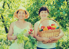 Women with  harvested vegetables in garden Royalty Free Stock Image