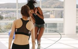 Women having fun during workout session at gym Royalty Free Stock Images