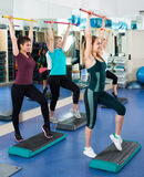 Women having group aerobic train Royalty Free Stock Image