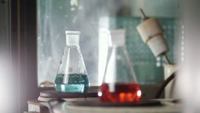 A women heat of the flasks in medical laboratory stock video