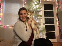 Women and her dog in front of a christmas tree. Women holding her Siberian husky puppy stock photo