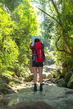 Women hiker with backpack checks map to find directions in wilderness area at waterfalls and forest. Stock Images