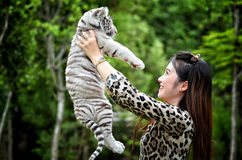 Women hold baby white bengal tiger. Pretty woman hold baby white bengal tiger royalty free stock images
