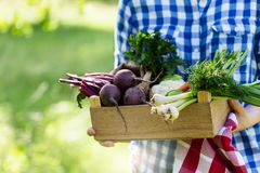 Women holding box with fresh organic vegetables and herbs royalty free stock photo