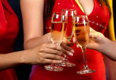 Women holding champagne glasses Stock Photos