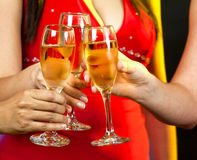 Women holding champagne glasses Stock Images