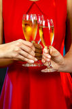 Women holding champagne glasses Stock Photography