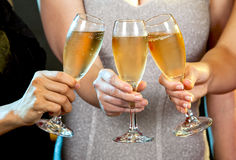 Women holding champagne glasses Stock Image