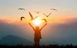 Women holding hands on the mountain evening sunshine show freedom and flying birds. Silhouette royalty free stock photos