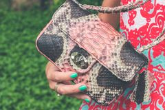 Women Holding Pink and Black Snakeskin Sling Bag Stock Photos